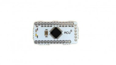 Microcontroller (MCU) Block