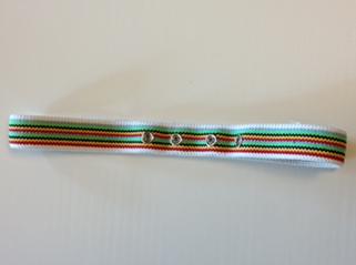 Body Harness voor Electro-Cap
